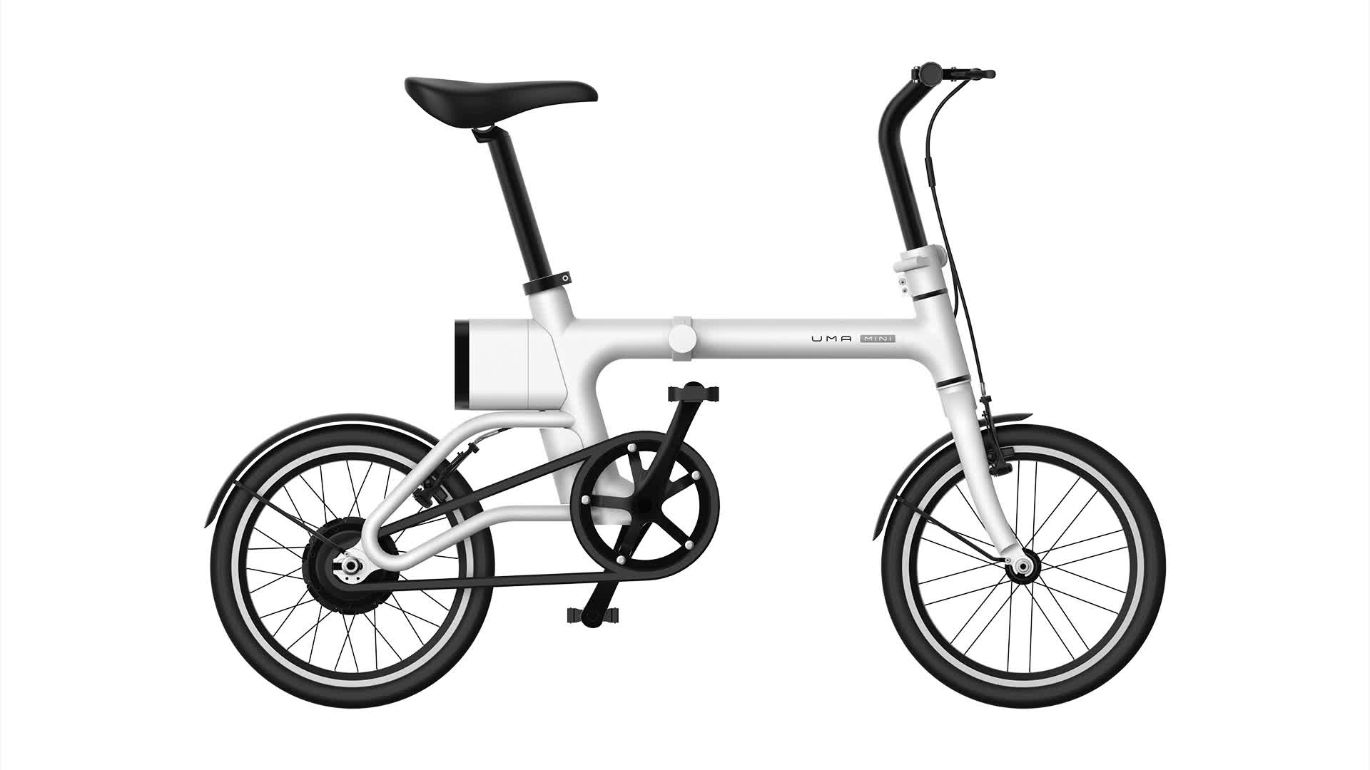 16 Inch Tire 36v Large Power Folding Bicycle Electric Pocket Bike