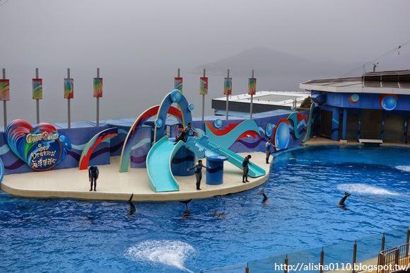 【香港】不去迪士尼,就是要去海洋公園!