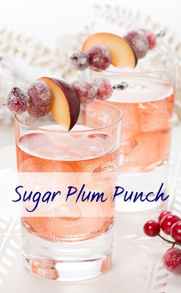 Sparkling Sugar Plum Punch 30 Tantalizing Plum Recipes