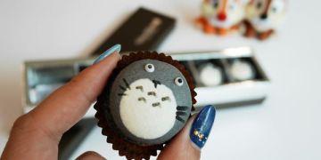 【網購美食】清境 Nina妮娜巧克力工坊 ● 萌系龍貓馬卡龍 ● 怎麼捨得吃掉你!❤❤