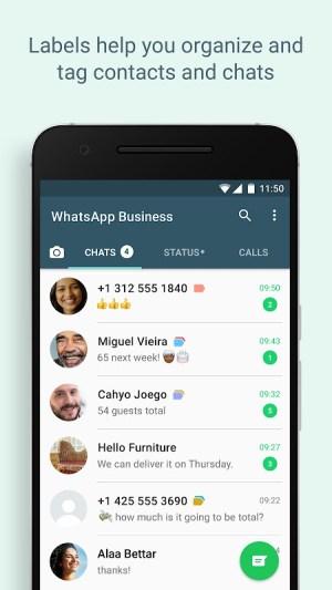 WhatsApp Business 2.21.19.9 Screen 5