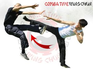 Android Jeet Kune Do Screen 3
