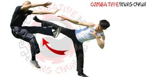 Android Jeet Kune Do Screen 1