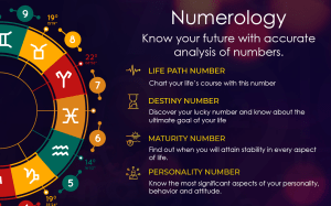 Astrology, Tarot Cards Reading & Numerology Number 2.0c Screen 3