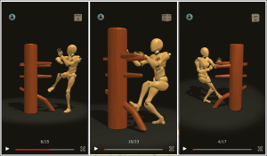 Android Wing Chun Trainer Screen 4