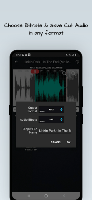MP4, MP3 Video Audio Cutter, Trimmer & Converter 0.4.1 Screen 3