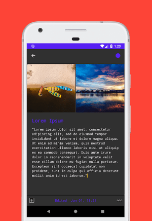 D Notes - Smart & Material - Notes, Lists & Photos 2.2.3 Screen 16