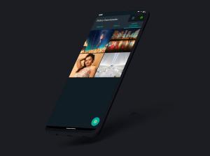 StatusDL - Status Saver for WhatsApp 1.0.4 Screen 5