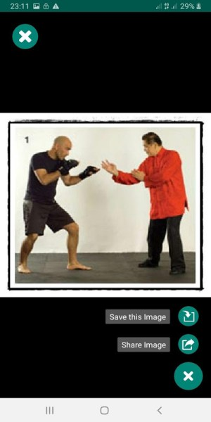 Android Easy Wing Chun Exercise for Beginner - Expert Screen 4