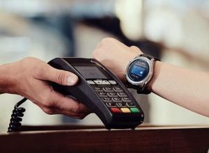 Samsung Pay (Watch Plug-in) 2.0.46.20006 Screen 1