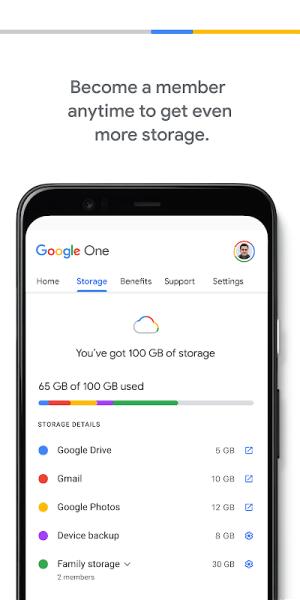 Google One 1.113.396049291 Screen 4