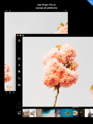 Polarr Photo Editor 4.6.1.2 Screen 15