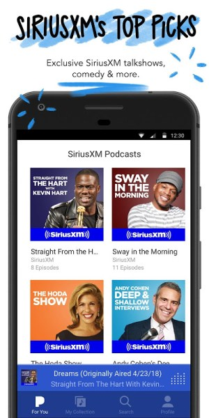 Android Pandora Music Screen 6