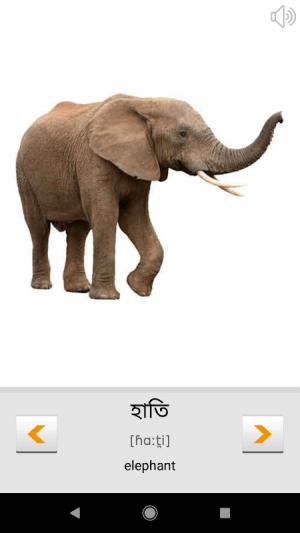 Learn Bengali words (Bangla) with Smart-Teacher 1.0.8 Screen 5