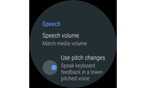 Google TalkBack 7.3.0.239841594 wear Screen 2