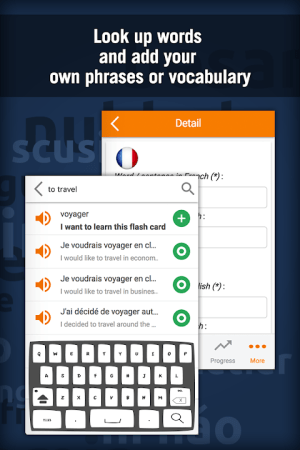Learn French with MosaLingua 10.42 Screen 4