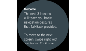 Google TalkBack 7.3.0.239841594 wear Screen 3