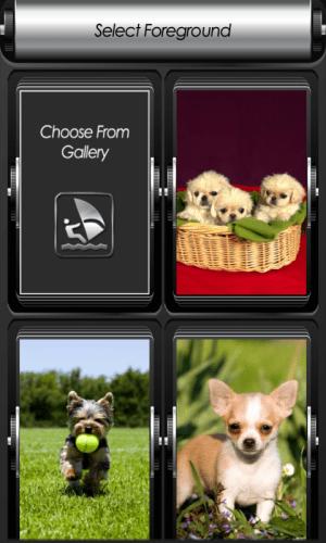 Puppy Zipper Lock Screen 1.2 Screen 2