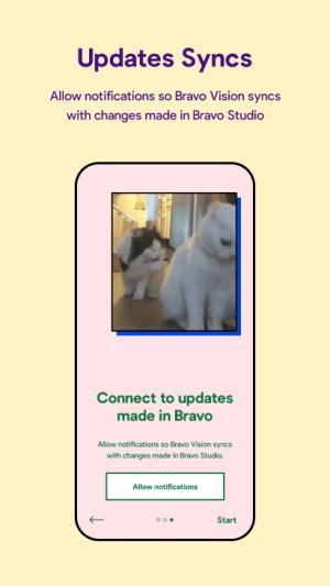 Bravo Vision 3.0.224 Screen 2