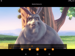 VLC for Android 3.3.0 RC 4 Screen 18