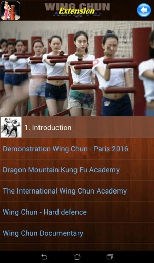 Android Wing Chun Kung Fu Screen 9