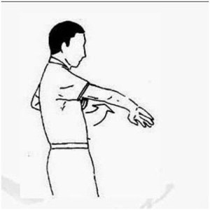 Android Wing Chun Technique Screen 1