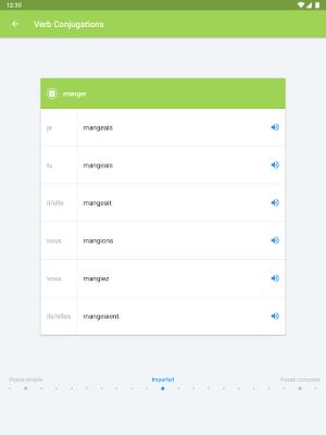 iTranslate Translator & Dictionary 5.2.9 Screen 10