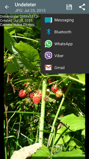 Undeleter 3.8.3.1.B126 Screen 3