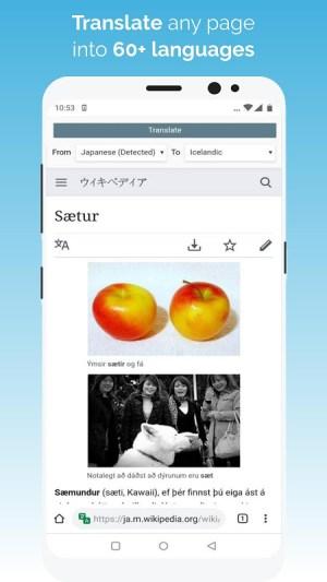 Kiwi Browser - Fast & Quiet Quadea Screen 8