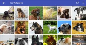 Dog Wallpapers HD 2.0 Screen 1