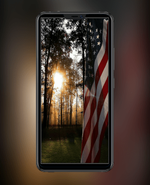 American Flag Wallpapers and Backgrounds 1.3 Screen 4