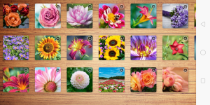 Android Ultimate Jigsaws Screen 2