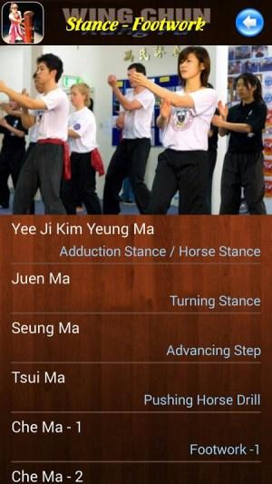Android Wing Chun Kung Fu Screen 3