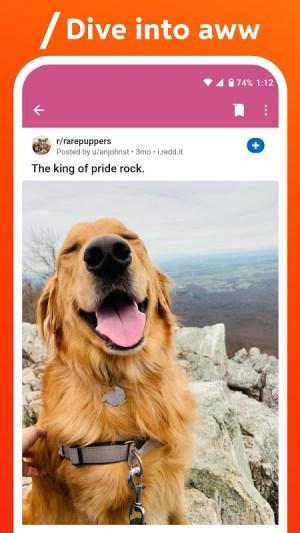 Reddit 2021.6.0 Screen 7