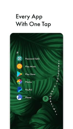 Niagara Launcher 🔹 fresh & clean 0.32.4 Screen 7