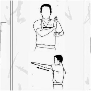 Android Wing Chun Technique Screen 3