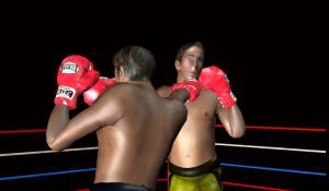 3D Boxing 2.3 Screen 6