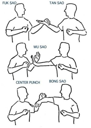 Android Wing Chun Training Screen 1