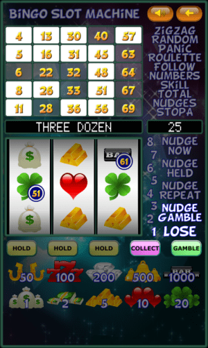 Bingo Slot Machine. 2.1.6 Screen 6