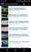 Play Guide for Terraria Screen