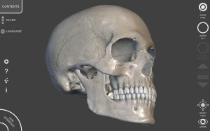 3D Anatomy for the Artist 1.2.7.1 Screen 12