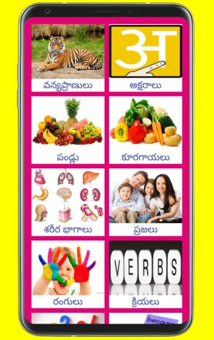 Learn Hindi from Telugu 19 Screen 11