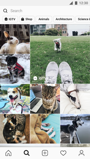 Instagram 93.0.0.14.102 Screen 4