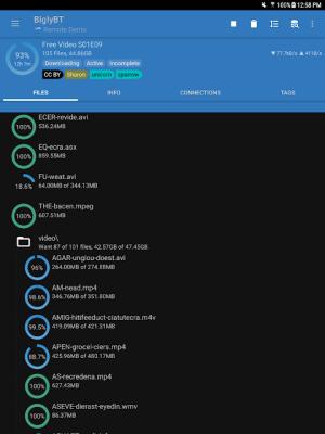 BiglyBT, Torrent Downloader Client 1.3.2.0 Screen 19