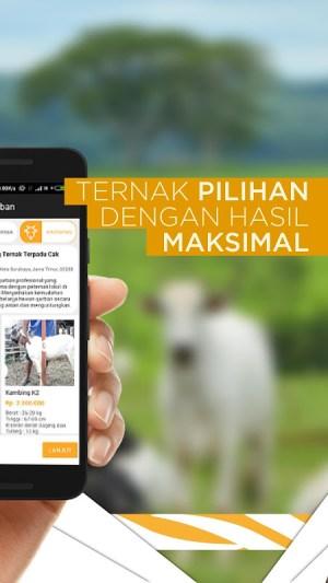 TERNAKNESIA - Qurban Online, Berkurban Mudah 1.6.1 Screen 2