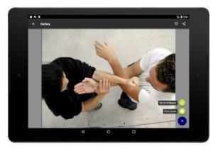 Wing Chun Exercise 1.4.0 Screen 4