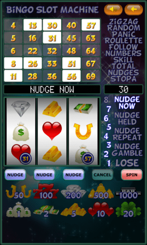 Bingo Slot Machine. 2.1.6 Screen 5