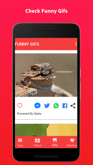 Android TOP LOL Funny Videos and Gifs Screen 2