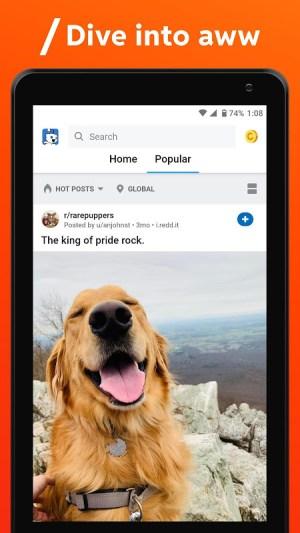 Reddit 2021.6.0 Screen 12