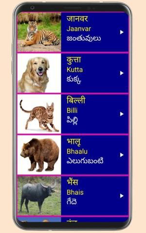 Learn Hindi from Telugu 19 Screen 8